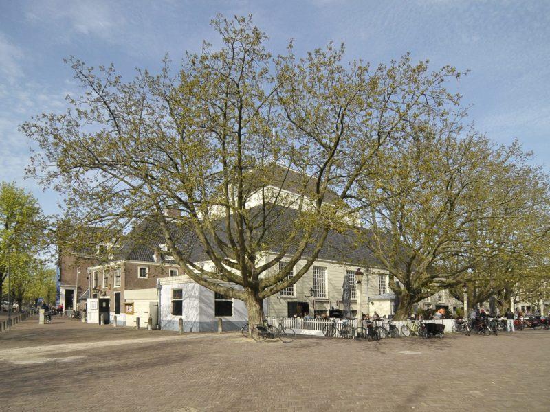 Amstelkerk 1 Lente[1] Annyas