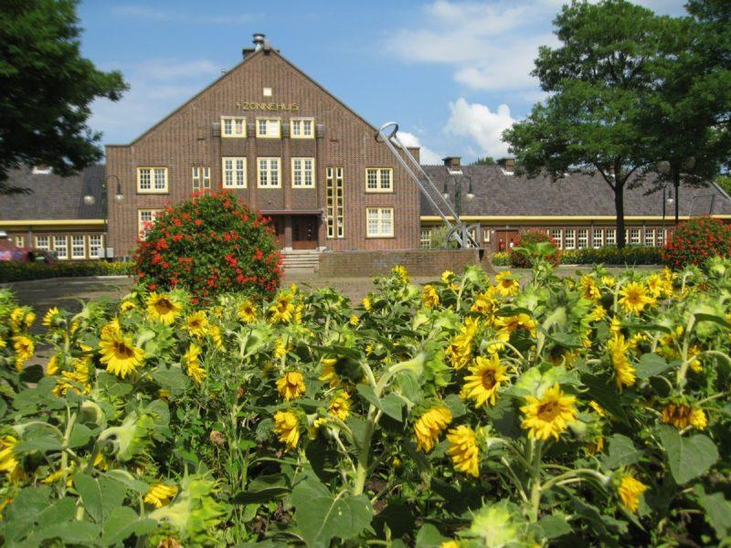 Zonnehuis 1 Zonneplein Zonnebloemen