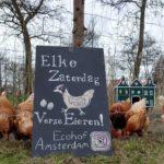 Ecohof kippen. Bron: Ecohofamsterdam.nl
