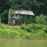 Verwaarloosd huis Houtplantage Bergendal Suriname