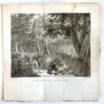 Pagina's uit het boek van Haafner.