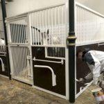 Aangepaste stallen. de paarden kunnen meer kanten op kijken en aan elkaar zitten.