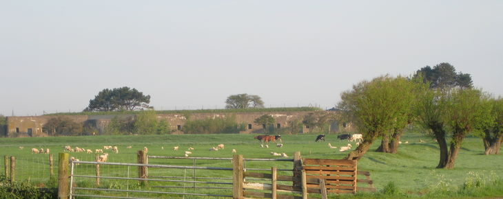 Start restauratie Fort bij Krommeniedijk