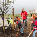 Start Aanleg Fruitbomenweide Geniepark
