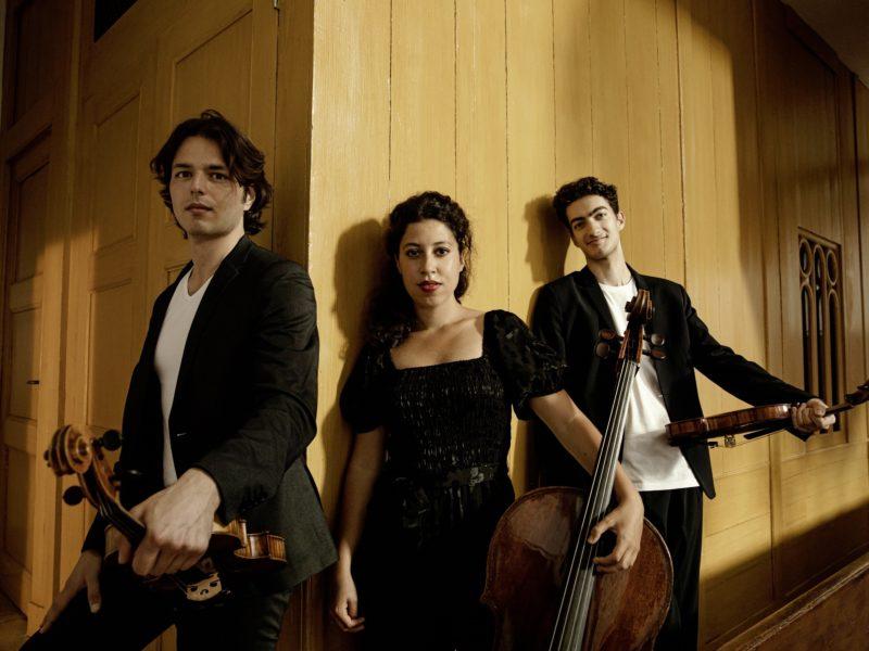 Agenda Waarts Kovalev Van Poucke Trio 3 Foto Sarah Wijzenbeek